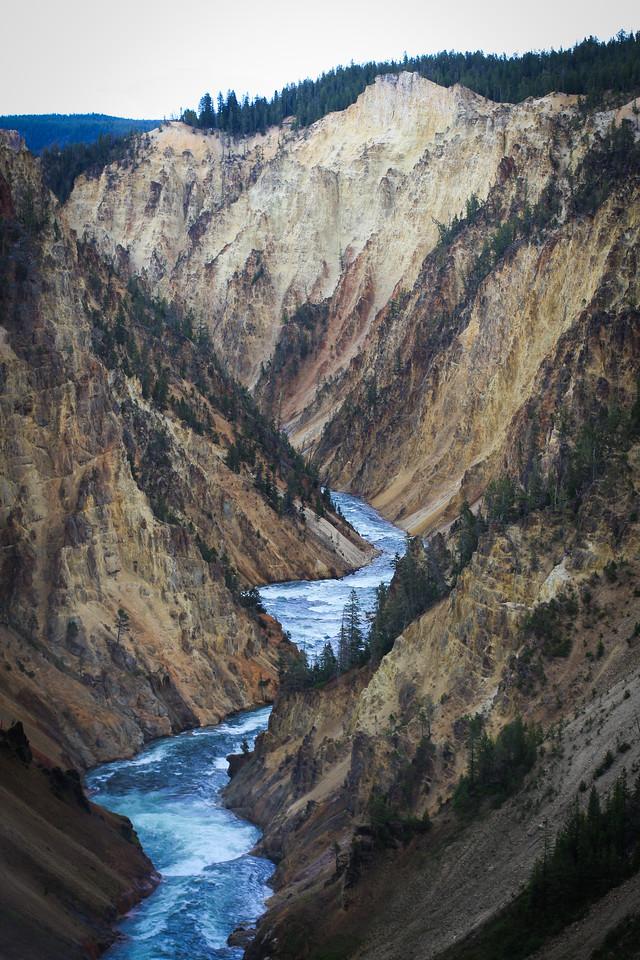 Yellowstone July 2016