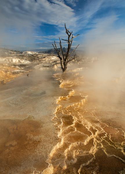 Yellowstone-663-2.jpg