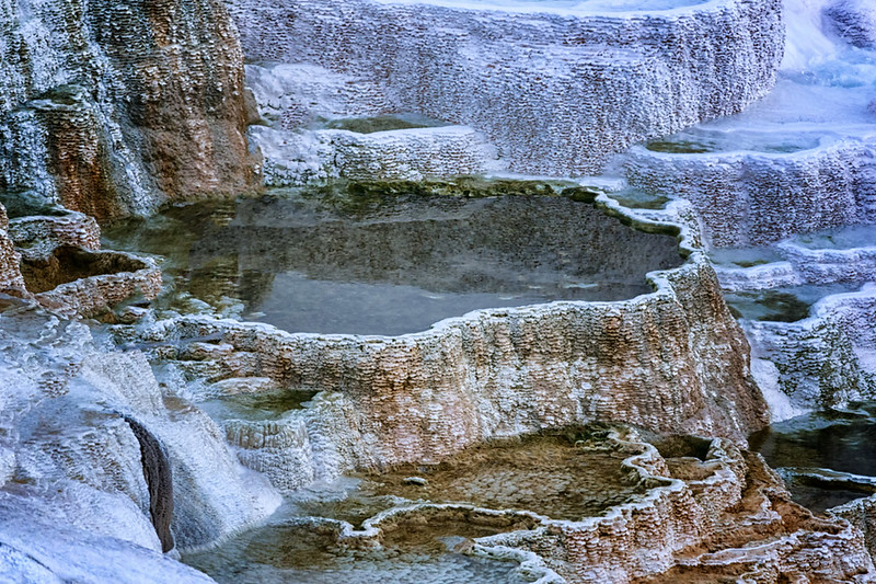 Upper Terrace, Mammoth Hot Springs