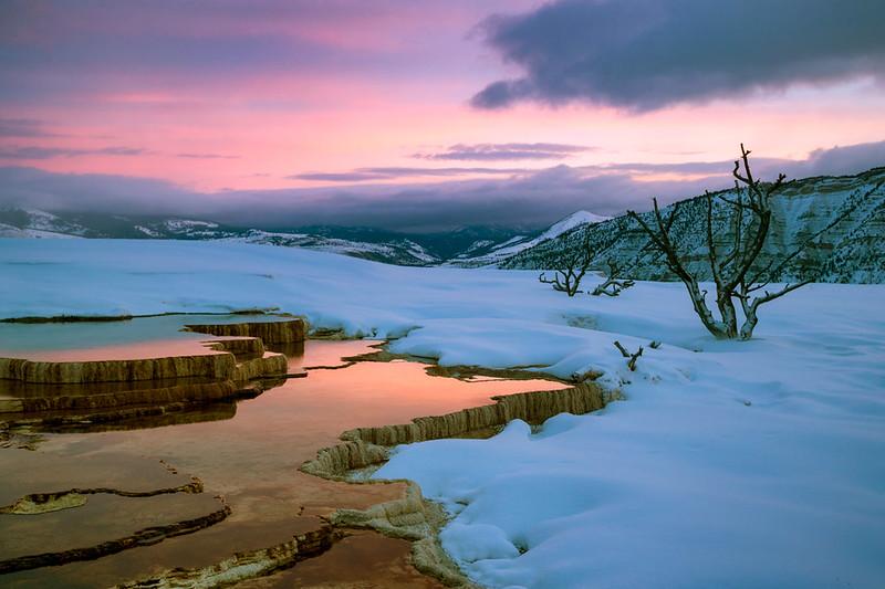 Sunrise at Upper Terrace, Mammoth Hot Springs