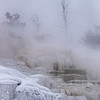 Lower Terrace, Mammoth Hot Springs