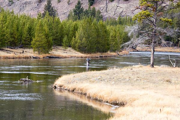 Yellowstone NP Oct 2016