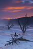 Sunset at Mammoth Hot Springs - Yellowstone National Park, Wyoming - Doug Beezley - May 2008
