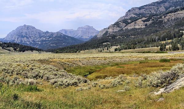 Yellowstone-022 (2)