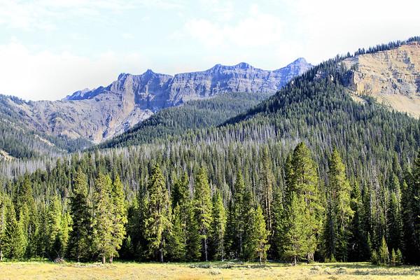 Yellowstone-023 (3)