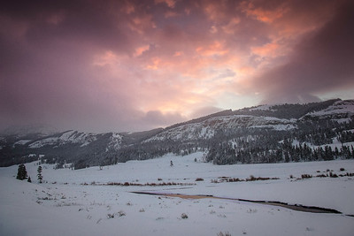 Lamar Valley sunrise