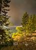 Fire Clouds adding to the Sunset along Lake Yellowstone - Photo by Pat Bonish