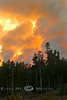 Fire Leaping over the Lodge Pole Pines at the Arnica Fire in Yellowstone National Park - Photo by Cindy Bonish