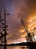 Forest Fire Clouds over Lake Yellowstone - Arnica Fire - Photo by Pat Bonish