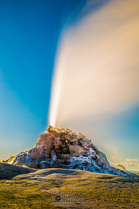 White Dome Geyser, Yellowstone National Park
