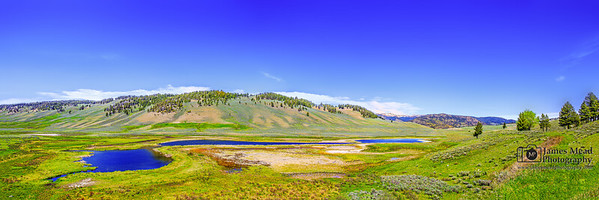 """Unspoiled,"" Blacktail Pond in the Spring, Yellowstone National Park, Wyoming"