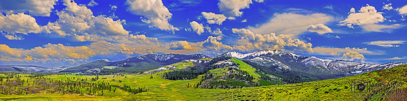 """""""Big Sky,"""" Mount Washburn in the Spring, Yellowstone National Park, Wyoming"""