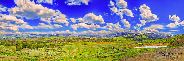 """Antelope Plains,"" Springtime in the Washburn Range, Yellowstone National Park, Wyoming"