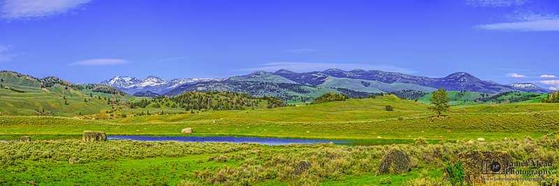 """""""American Frontier,"""" Blacktail Pond, Yellowstone National Park"""