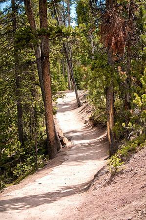 South Rim Canyon trail.
