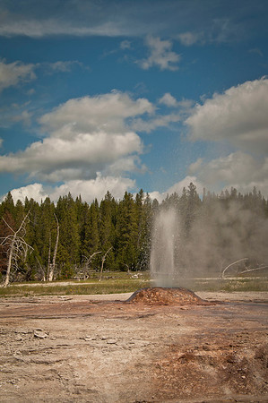 Pink Cone Geyser.  Manganese oxide deposits cause the cones pink color.