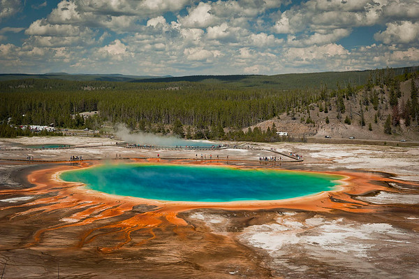 Grand Prismatic Spring.  Of all the pictures I took the pictures of Grand Prismactic Spring are my favorite. Too big to be appreciated from ground level I hiked up a moderately high ridge about a half mile south of GPS.  You can access the ridge from the trail leading to Fairy Falls.  Once at the top, and you are above the trees, you get a breath-taking view of this awesome spring. To me this one shot was worth the whole trip.