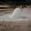 Spouter Geyser:  This was the last geyser I photographed but there were dozens more to see but that is for the next trip.