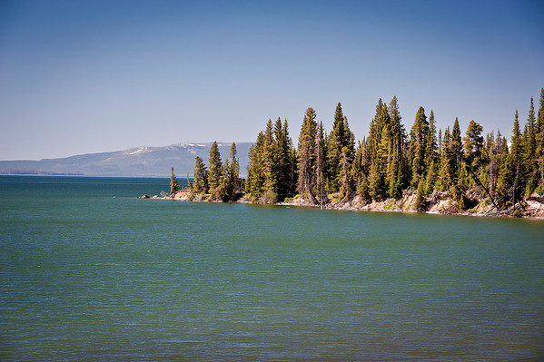 """Yellowstone Lake from the """"Storm Point Trail""""."""