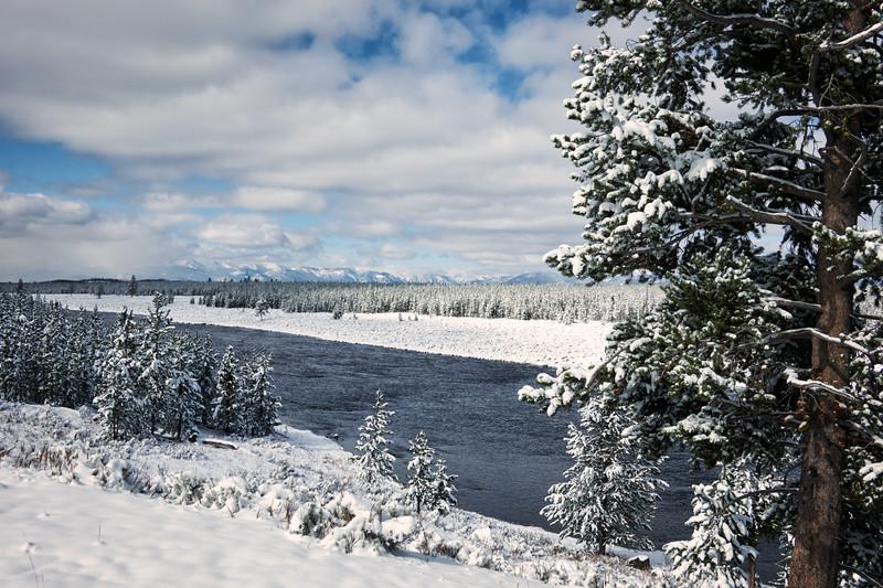Madison River #2
