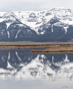 Yellowstone, May 2014 (12 of 194)