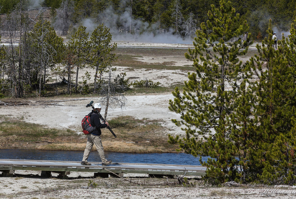 Yellowstone, May 2014 (102 of 194)