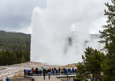 The balcony is also a great place to watch Old Faithful...which was as faithful as ever...