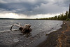 Storm Blowing Across Lewis Lake - Yellowstone National Park - Photo by Pat Bonish