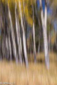 More blur...