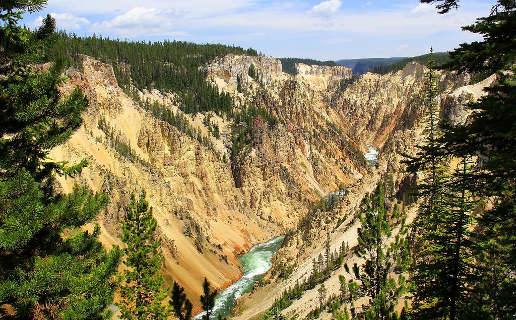 Grand Canyon of Yellowstone - Yellowstone National Park