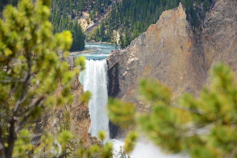 Beautiful waterfall in    Yellowstone National Par.