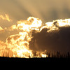 """Fire over Fire"" by Willie, 13 