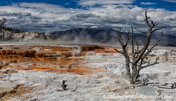 Mammoth Hot Springs-3
