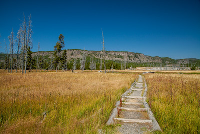 Trail across Stock Bridge toward Biscuit Basin in  Yellowstone National Park.