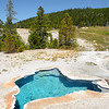 Blue Star hot spring at Yellowstone National Park.