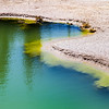 Hot Spring at Norris Geyser Basin