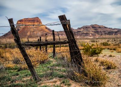fence post-sm _6742