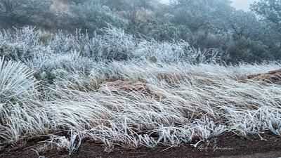 brush ice wind blowing-sm_6044