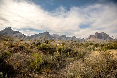 Chisos mountains desert view_9613