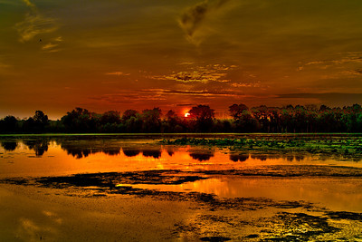 HDR sunrise Brazos Bend 7-17-10