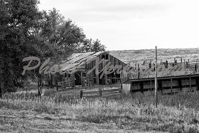 old B&W barn_4690