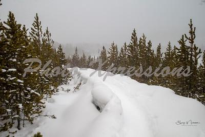 path-norris-wm_0122