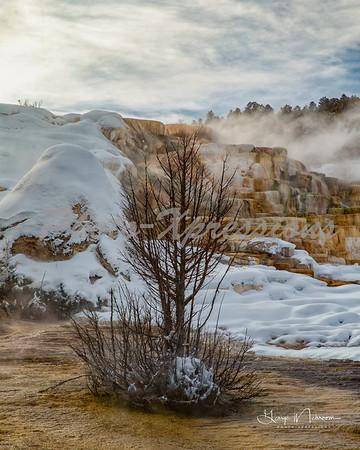 landscape-8x10_0051