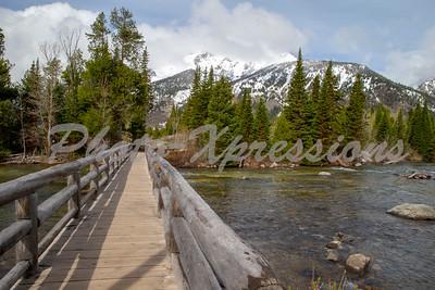 walking bridge mountain river_2623