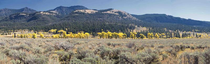 Yellowstone Park - September 2014