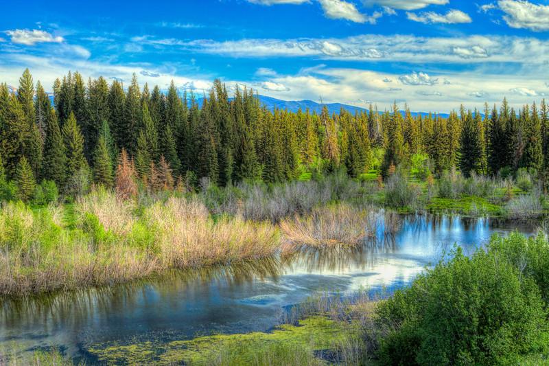 View At Moose Wyoming