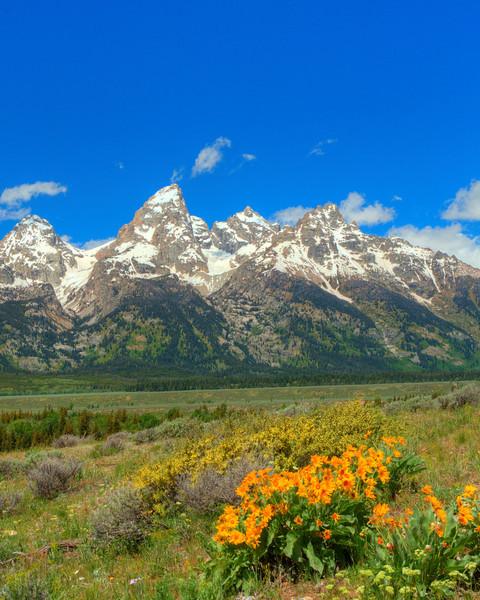 Grand Tetons  Rocky Mountains