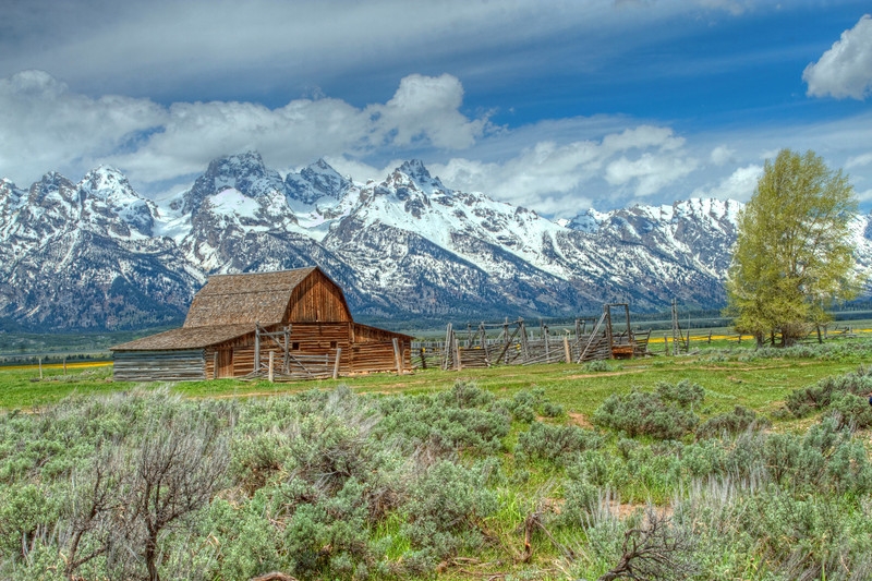 The Mormon Barn, Grand Tetons Wyoming
