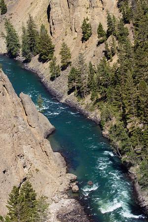 Yellowstone & Tetons