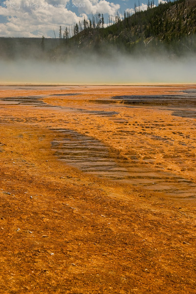 Runoff from Grand Prismatic Spring.